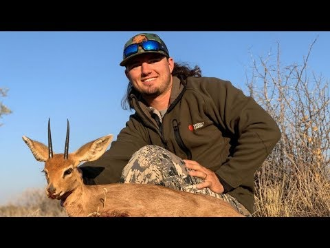 Hunting Africas Smallest ANTELOPE!!!
