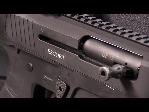 Hatsan Escort DF12: The AR Shotgun