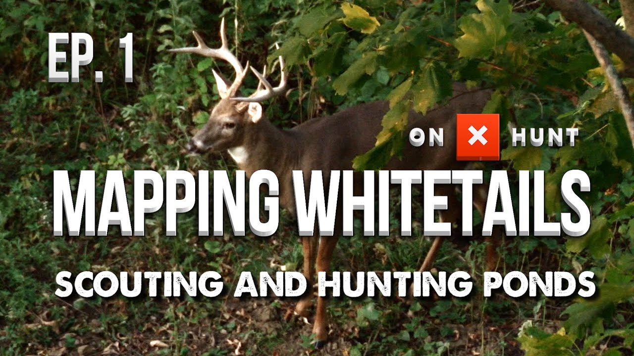 HOW TO HUNT PONDS! – Mapping Whitetails