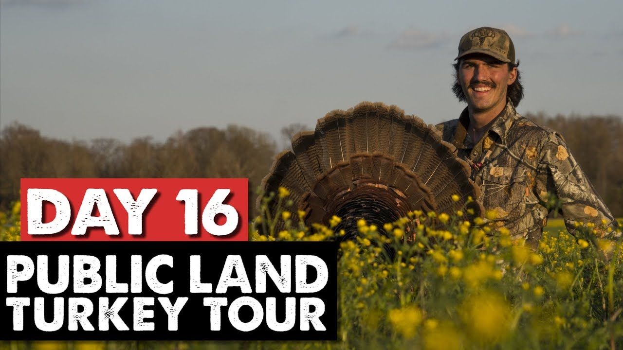 TRACKING GOBBLERS IN OLE MISS!- Public Land Turkey Tour Day 16