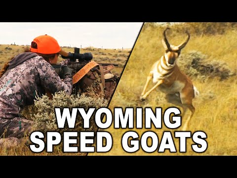 SPOT 'n STALK in Pronghorn Country!