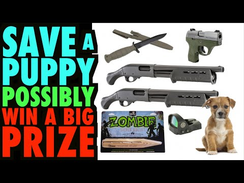 Save a Puppy and Possibly Receive a Prize. (Silver Bullets, Shotguns, Pico, Red Dot, & more)