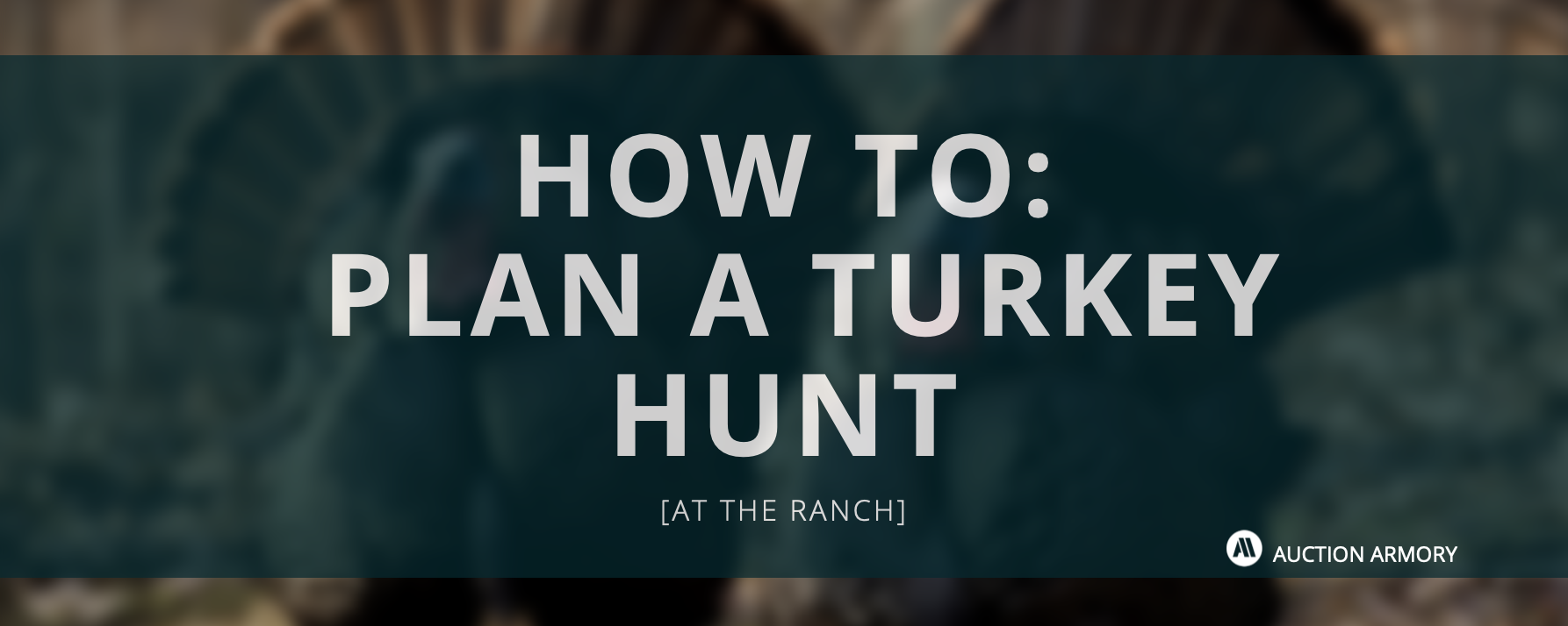 At the Ranch: How to Plan a Turkey Hunt