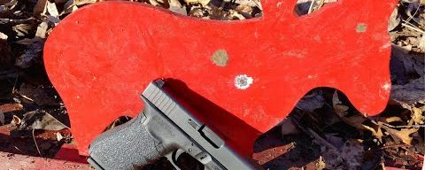 Glock 41 Small Game Hunt
