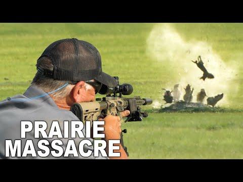 Popping Prairie Dogs in North Dakota