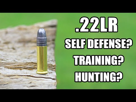 How Effective Is .22LR?